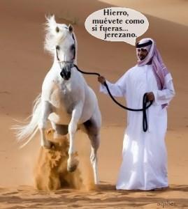 caballos-arabes-8